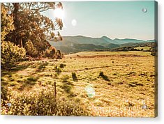 Meadows And Mountains Acrylic Print