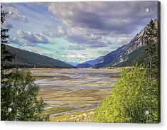 Acrylic Print featuring the photograph Medicine Lake Bed 2006 by Jim Dollar