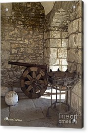 Medieval Cannon- Lucca Acrylic Print by Italian Art