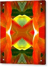 Meditation Acrylic Print by Amy Vangsgard