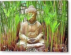 Meditation Acrylic Print by Ray Shrewsberry