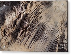 Medium Cu Motorcycle And Car Tracks In Mud Acrylic Print