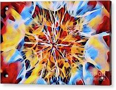 Medow Dandelion Acrylic Print
