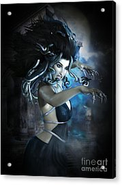 Medusa Acrylic Print by Shanina Conway