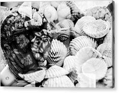 Meduza Acrylic Print by Tommytechno Sweden
