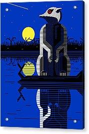 Meerkat Lookout Acrylic Print