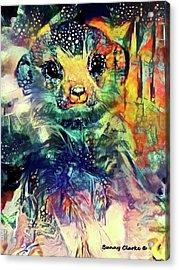 Meerkat Magic Acrylic Print