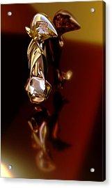 Meerkat Trophy Acrylic Print