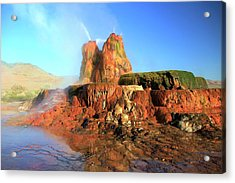 Meet The Fly Geyser Acrylic Print
