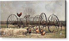 Acrylic Print featuring the photograph Meeting At Rusty Rake by Robin-Lee Vieira