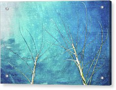 Meeting In Winter Acrylic Print