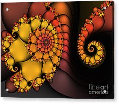 Acrylic Print featuring the digital art Meeting by Karin Kuhlmann