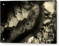 Meeting Acrylic Print by Olimpia - Hinamatsuri Barbu