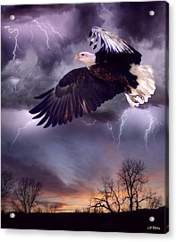 Meeting The Storm Acrylic Print by Bill Stephens