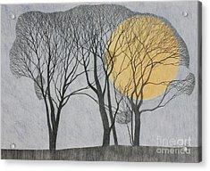 Megamoon Acrylic Print by Ann Brain