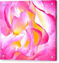 Mel Acrylic Print by Gwyn Newcombe