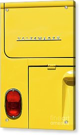 Mellow Yellow Acrylic Print by Tim Gainey