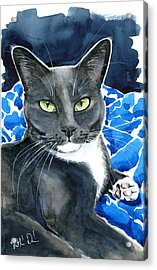 Melo - Blue Tuxedo Cat Painting Acrylic Print