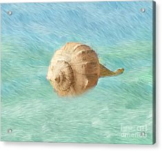 Acrylic Print featuring the photograph Melody Of The Sea by Betty LaRue