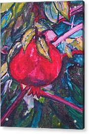 Acrylic Print featuring the painting Melograno by Helena Bebirian