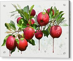 Melting Apples Acrylic Print