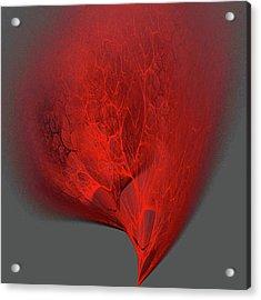 Membrane Acrylic Print