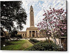 Memorial Tower - Lsu Acrylic Print by Scott Pellegrin