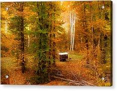 Memories Of Seasons Past  Acrylic Print