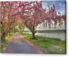 Memories Of Spring Acrylic Print by Lori Deiter