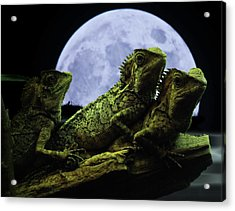 Acrylic Print featuring the photograph Menage A Trois by Jeremy Martinson