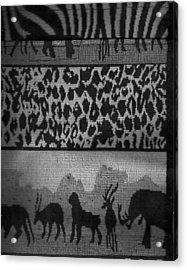 Menagerie Parade  Acrylic Print by Anne-Elizabeth Whiteway