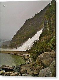 Mendenhall Glacier Park Acrylic Print by Martin Cline