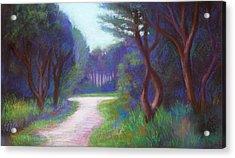 Mendocino Blue Acrylic Print