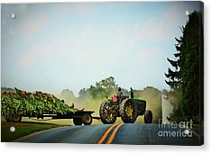 Menonnite Tobacco Farmer And Wife Acrylic Print