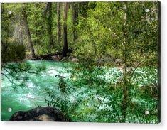 Merced River Acrylic Print by Michael Cleere