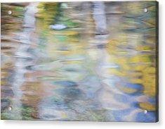 Merced River Reflections 6 Acrylic Print