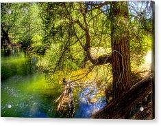 Merced River2 Acrylic Print by Michael Cleere