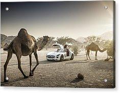 Mercedes Benz Sls With Camels In Saudi Acrylic Print