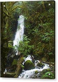 Merriman Falls Acrylic Print by Wilbur Young