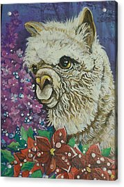 Acrylic Print featuring the painting Merry Christmas Alpaca by Patty Sjolin