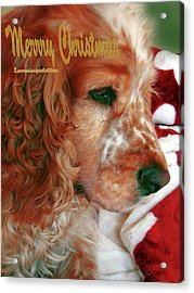 Merry Christmas Art 29 Acrylic Print