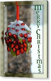Merry Christmas Acrylic Print by Lisa Knechtel
