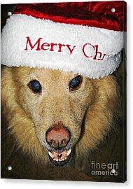 Merry Christmas Acrylic Print by Sarah Loft