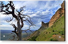 Acrylic Print featuring the photograph Mesa Verde Mood by Skip Hunt
