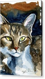 Mesmerizing Eyes - Tabby Cat Painting Acrylic Print