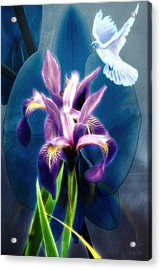 Acrylic Print featuring the digital art Message Of Peace by Pennie McCracken