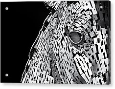 Metal Horse Abstract Acrylic Print
