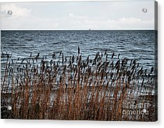 Metallic Sea Acrylic Print