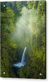 Acrylic Print featuring the photograph Metlako Falls Dressed In Fog by Patricia Davidson