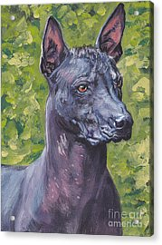Acrylic Print featuring the painting Mexican Hairless Dog Standard Xolo by Lee Ann Shepard